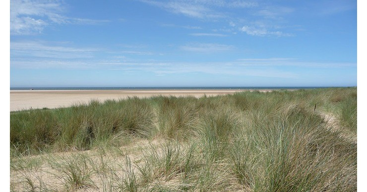 The Holkham Experience